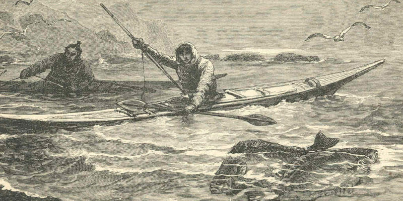 black and white drawing of natives spearfishing from kayak