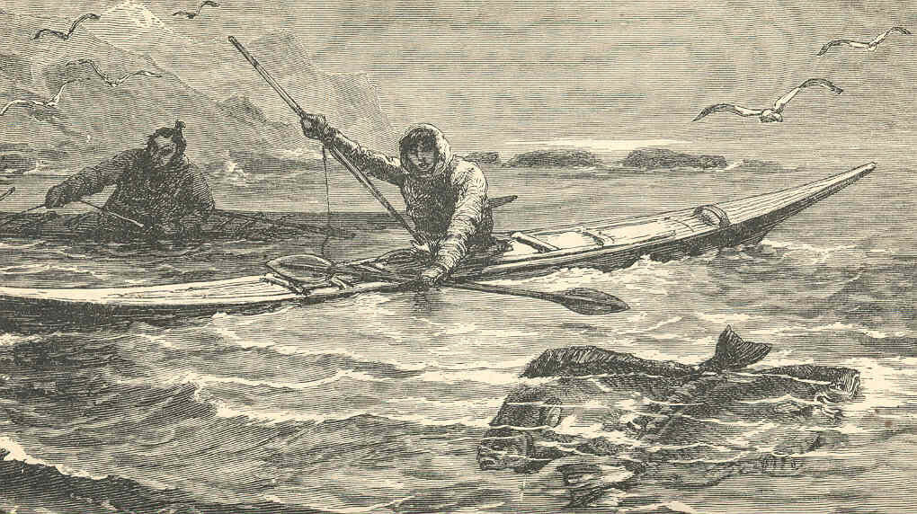 A Brief History Of Spearfishing And Freediving The