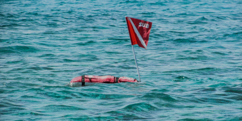 Diving Spearfishing Float Buoy Red diver down Safety Flag