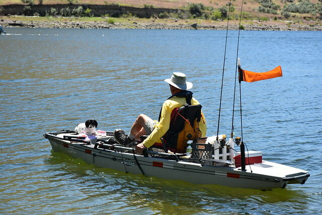 kayak angler on hobie with dog in the bow
