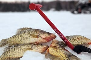 fish and ice fishing chisel