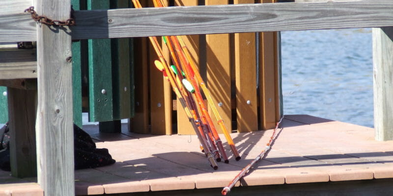 bunch of fishing cane poles on dock