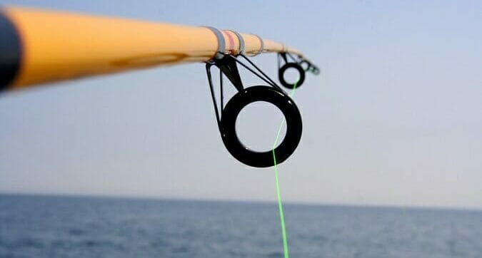 fishing rod with green line