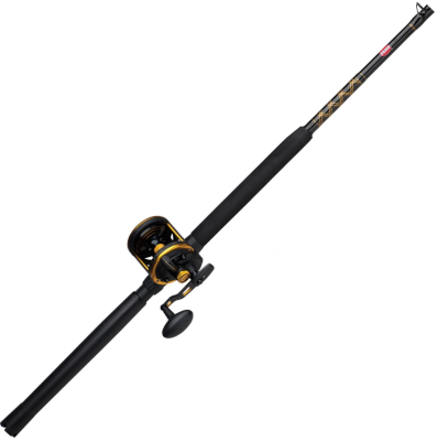 penn squall lever drag rod and reel combo