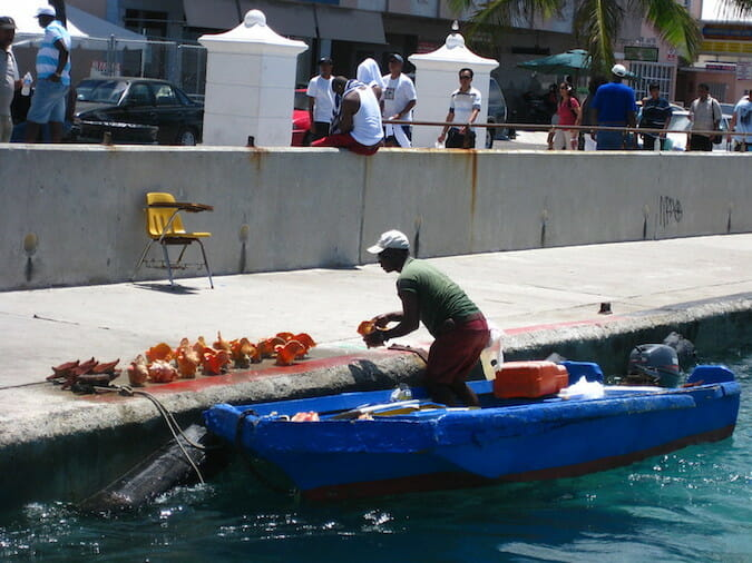 conch vendor in the bahamas