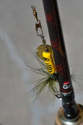 trout spinner and rod